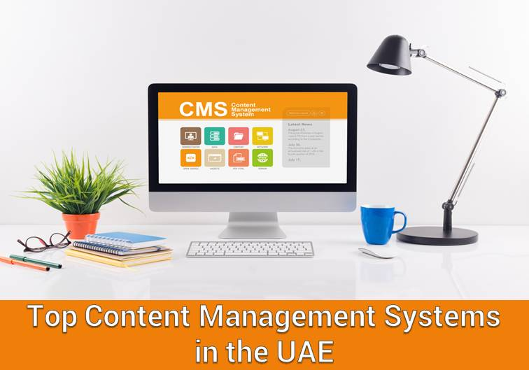 Top Content Management Systems in the UAE
